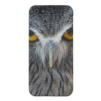 Macro Black and White Scops Owl iPhone 5 Covers