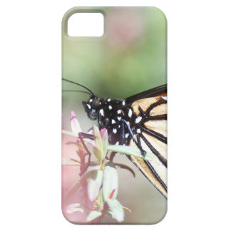 Macro Butterfly iPhone 5/5S Cover