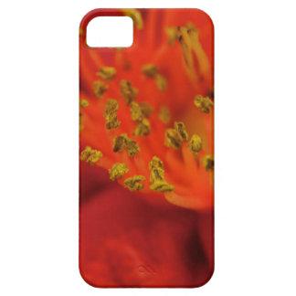 Macro Camellia iPhone Case iPhone 5 Cover