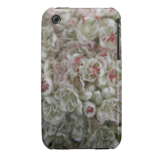 Macro Cluster of Tiny Flowers iPhone 3 Case