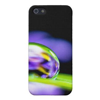 Macro Drop of Water on Blade Grass Purple Flower iPhone 5/5S Cases
