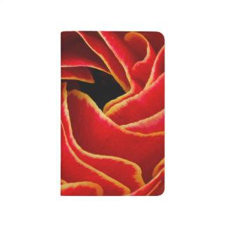 Macro flower abstract at Flower Fields Journal