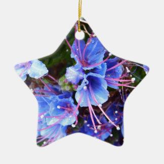 Macro Flower Ornaments