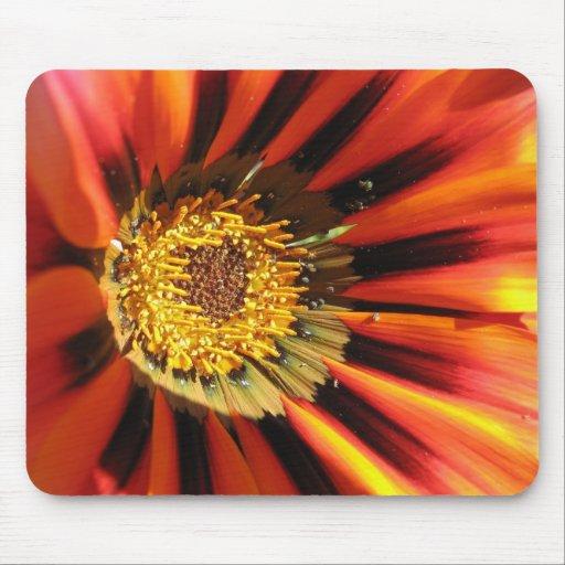 Macro flower photography Mousepad