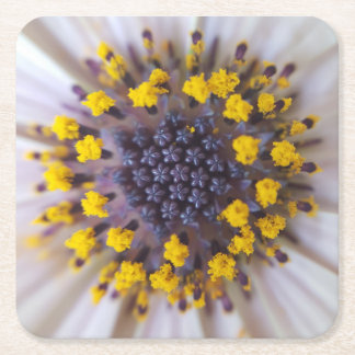 Macro Flower Pollen Square Paper Coaster
