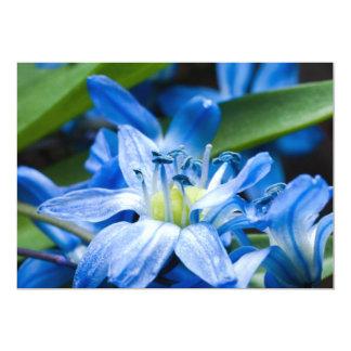 Macro fo blue snowdrop flower 13 cm x 18 cm invitation card