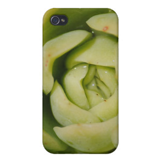 "Macro ""Green"" Iphone Case iPhone 4/4S Cases"