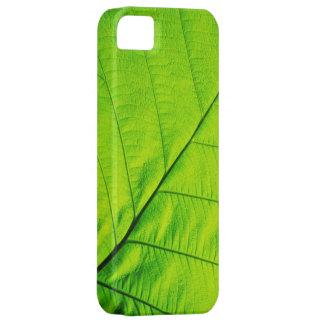 Macro Green Leaf iPhone 5 Covers