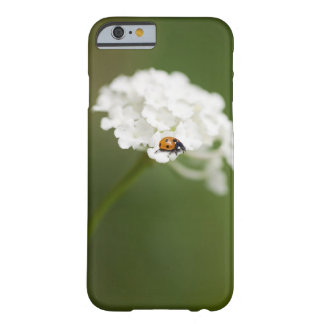 Macro image of a Ladybird on a wild flower Barely There iPhone 6 Case