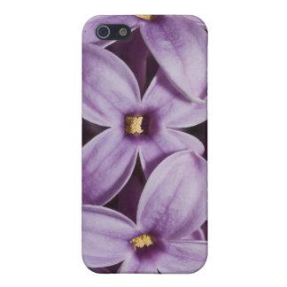Macro Lilacs iPhone 5 Case