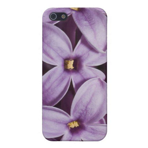 Macro Lilacs Covers For iPhone 5