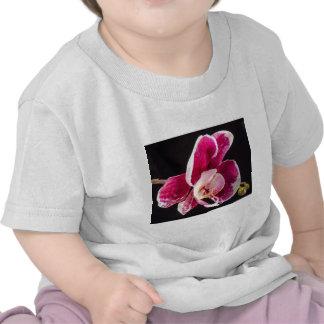 Macro Orchid Shirt