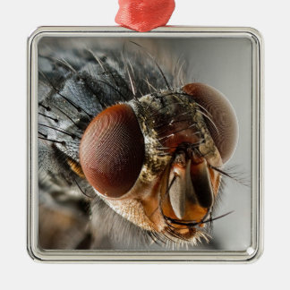 Macro photo of a fly Silver-Colored square decoration