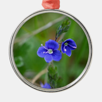 Macro photo of a  german speedwell Silver-Colored round decoration