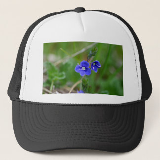 Macro photo of a  german speedwell trucker hat