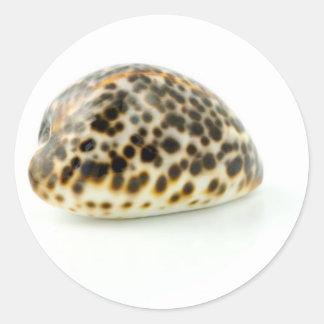 Macro Photo Of A Seashell 4 Round Stickers