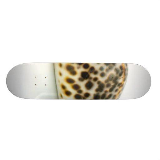 Macro Photo Of A Seashell 4 Skate Boards