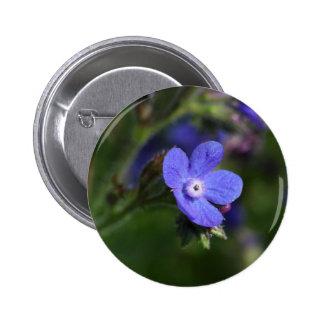 Macro photo of an Italian Bugloss 6 Cm Round Badge