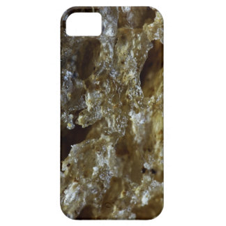 Macro Photography Bread iPhone 5 Cover