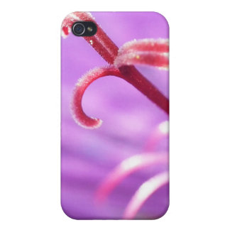 Macro Pink & Purple Stamen Flower Photo Covers For iPhone 4
