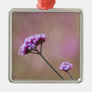 Macro Purple and Pink Flowers Silver-Colored Square Decoration
