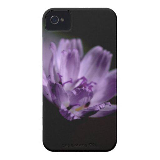 Macro Purple Wildflower Case-Mate iPhone 4 Case