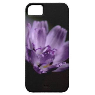 Macro Purple Wildflower iPhone 5 Case