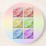 Macro Rainbow Roses