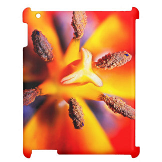 Macro Red and Yellow Tulip Photo Case For The iPad 2 3 4