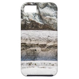 Macro Rock iPhone 5 Case