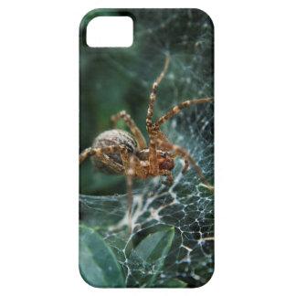 Macro Spider iPhone 5 Case