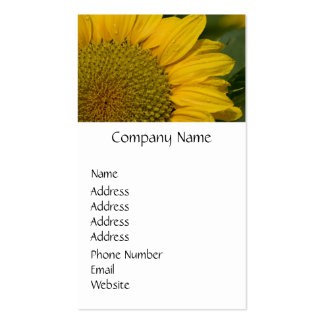 Macro Sunflower With Raindrops Pack Of Standard Business Cards