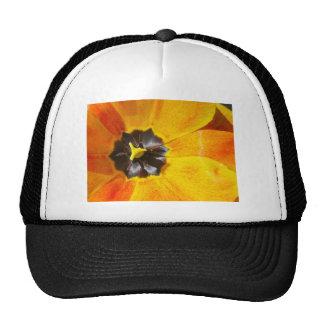 Macro Tulip Trucker Hat