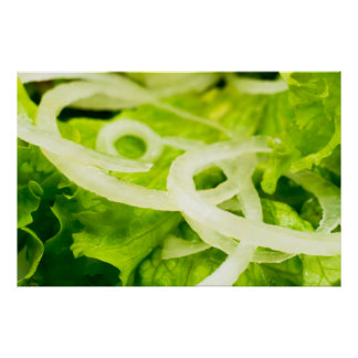 Macro view of the leaves of lettuce and onion ring poster