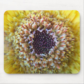 Macro Yellow Flower Center Mouse Pad