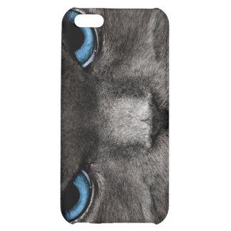 Mad Cat iPhone 5C Covers