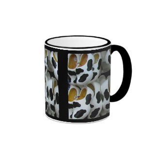 Mad cow feet, ideal for mad cows mugs