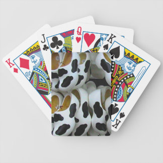 Mad cow feet ideal for mad cows poker cards