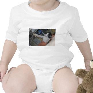 Mad Kitty Tshirts