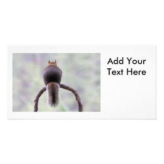 Mad Squirrel Photo Greeting Card