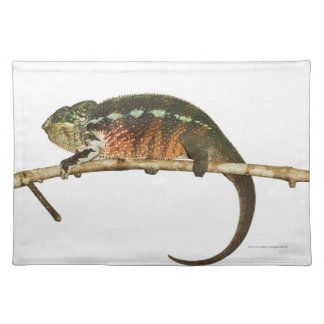 Madagascar 2 placemat