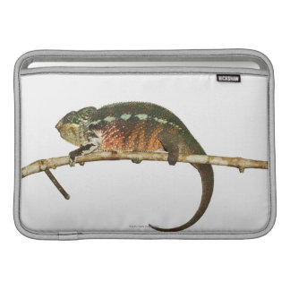 Madagascar 2 sleeve for MacBook air