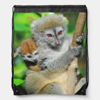 Madagascar, Andasibe, Ile Aux Lemuriens, Mother Drawstring Bag