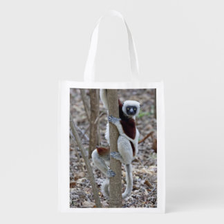 Madagascar, Ankarafantsika Reserve; Ampijoroa; Reusable Grocery Bag