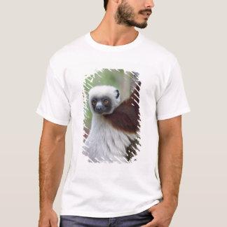 Madagascar, Ankarafantsika Reserve, Ampijoroa. T-Shirt