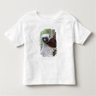 Madagascar, Ankarafantsika Reserve, Ampijoroa. Toddler T-Shirt