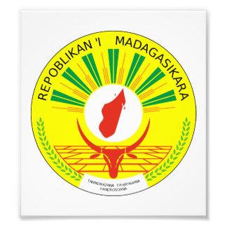 Madagascar Coat Of Arms Photo