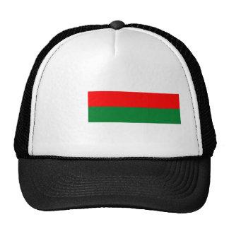 Madagascar country long flag nation symbol republi cap