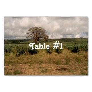 Madagascar Countryside Table Cards