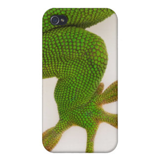 Madagascar day gecko (Phelsuma madagascariensis 2 Case For The iPhone 4